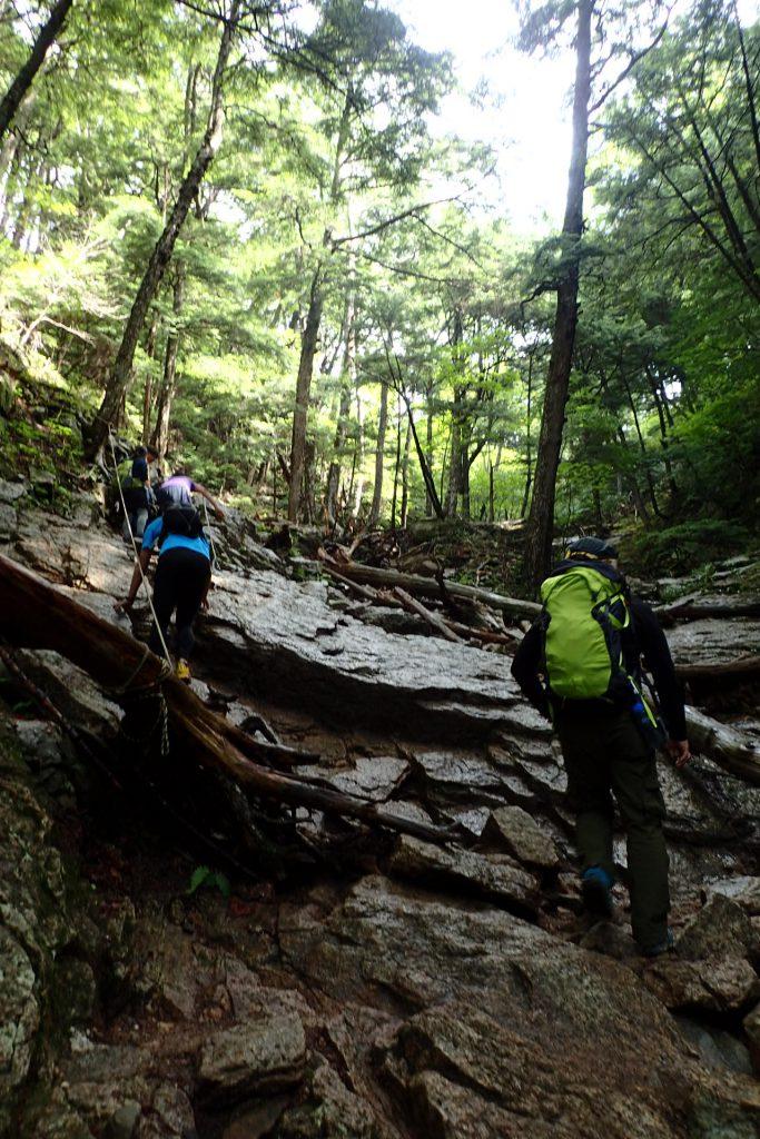 一般登山道を通って大ヤスリ岩へ